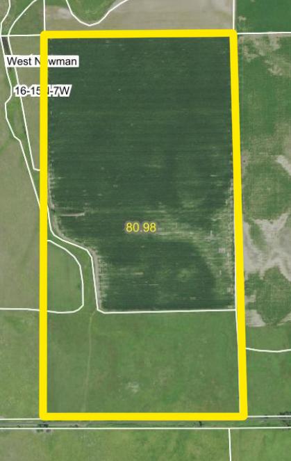 Aerial Map BIR1046