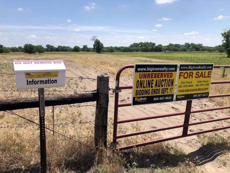 Land Auction 203.84+/- Acres Madison County, NE