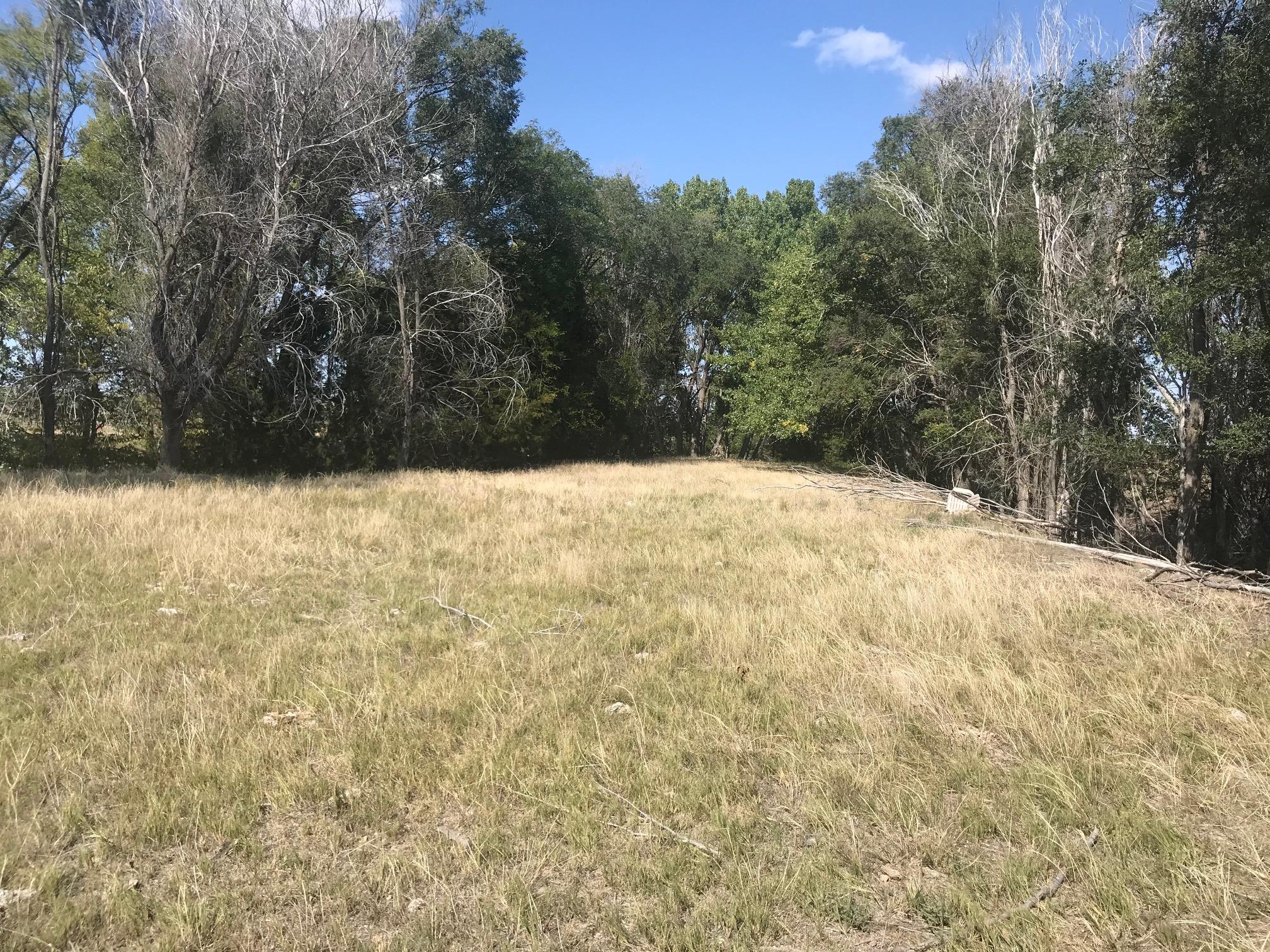 Meadow-2-3.jpg