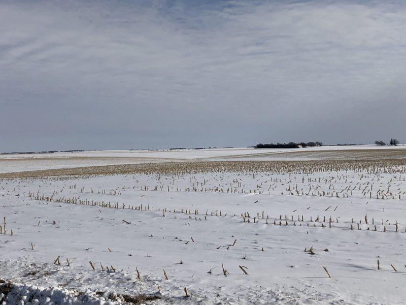 100+/- Acres Madison County, NE