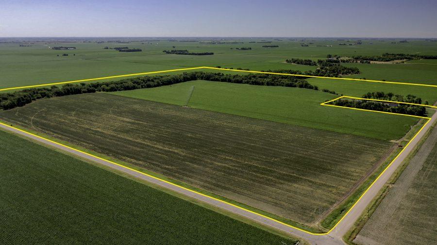 Land Auction 156.73+/- Acres Hall County, NE