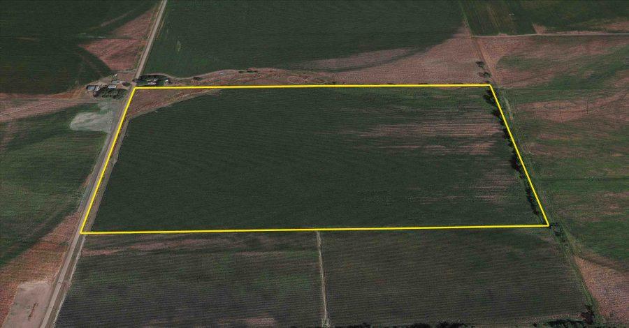 Land Auction 80+/- Acres Hall County, NE