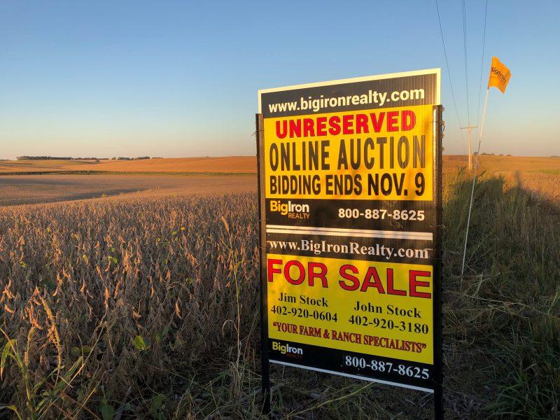 Land Auction 80+/- Acres Madison County, NE
